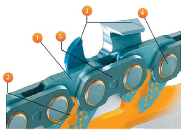 Конструкция современной пильной цепи: 1 — ведущее звено; 2 — отверстия и каналы подачи масла к шарнирным соединениям; 3 — режущее звено (ограничитель глубины и режущий зуб) с маркировками по заточке; 4 — шарнирное соединение; 5 — соединительное звено