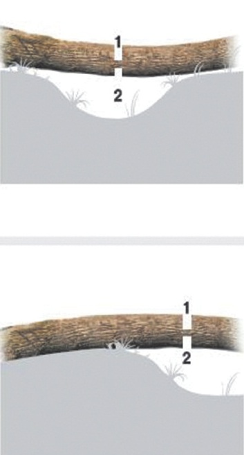 Раскряжевка напряженных хлыстов (цифрами указан порядок выполнения пропилов)